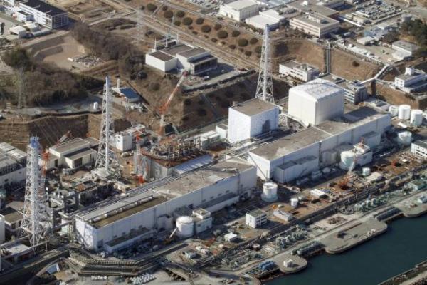 Fukushima vuole rinascere