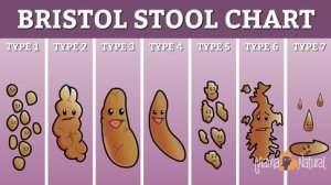 bristol-stool-chart-happy-mama-natural-version_jpg_485x0_crop_upscale_q85