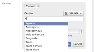 facebook-gender-roles-20140216-1