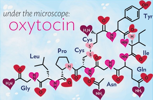 ossitocina-autismo-ormone-amore